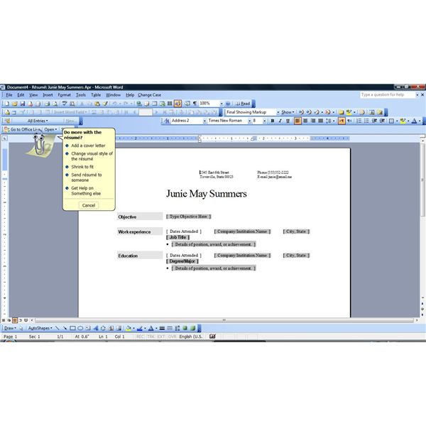 Resume Format For MS Word - Microsoft Word Resume Template