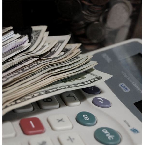 A Guide to Interpreting Pro Forma Income Statements Revenues  Expenses