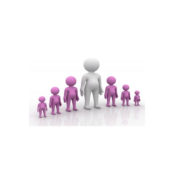 List of Interpersonal Skills for Project Managers How to Become a