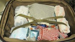新加坡自由行☼塞不滿行李箱的紀念品