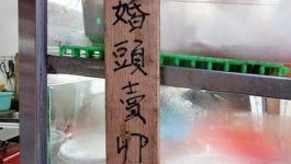 【跪婦阿冠週報-43】「婚頭賣卵蛋」是蝦咪?