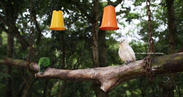 【南投推薦景點】星月天空猴探井景觀餐廳 - 有活動有動物.假日親子遊.景觀親子餐廳.看夜景視野也很棒