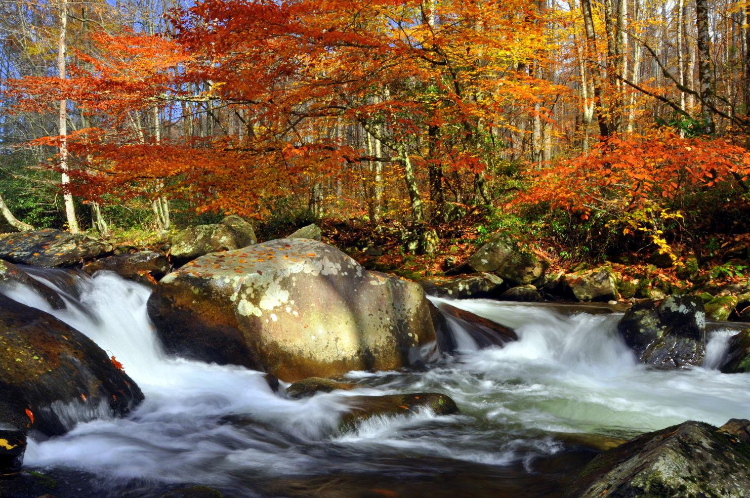 Smoky Mountains Fall Wallpaper 55 Gorgeous Autumn Photos Taken By Budget Travelers