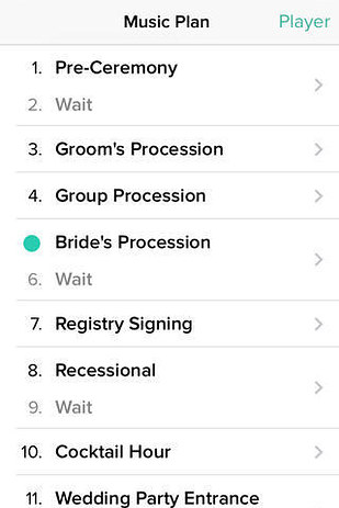 Old Fashioned Wedding Playlist Template Festooning - Resume Ideas - wedding song list for dj template