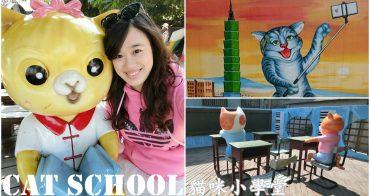 雲林虎尾景點|『貓咪小學堂』貓咪立體彩繪。跟著萌貓一起上學