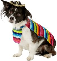 Rubie's Costume Company Mexican Dog & Cat Serape, Medium ...