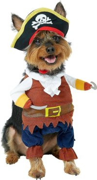 Pet Krewe Pirate Dog & Cat Costume, Medium