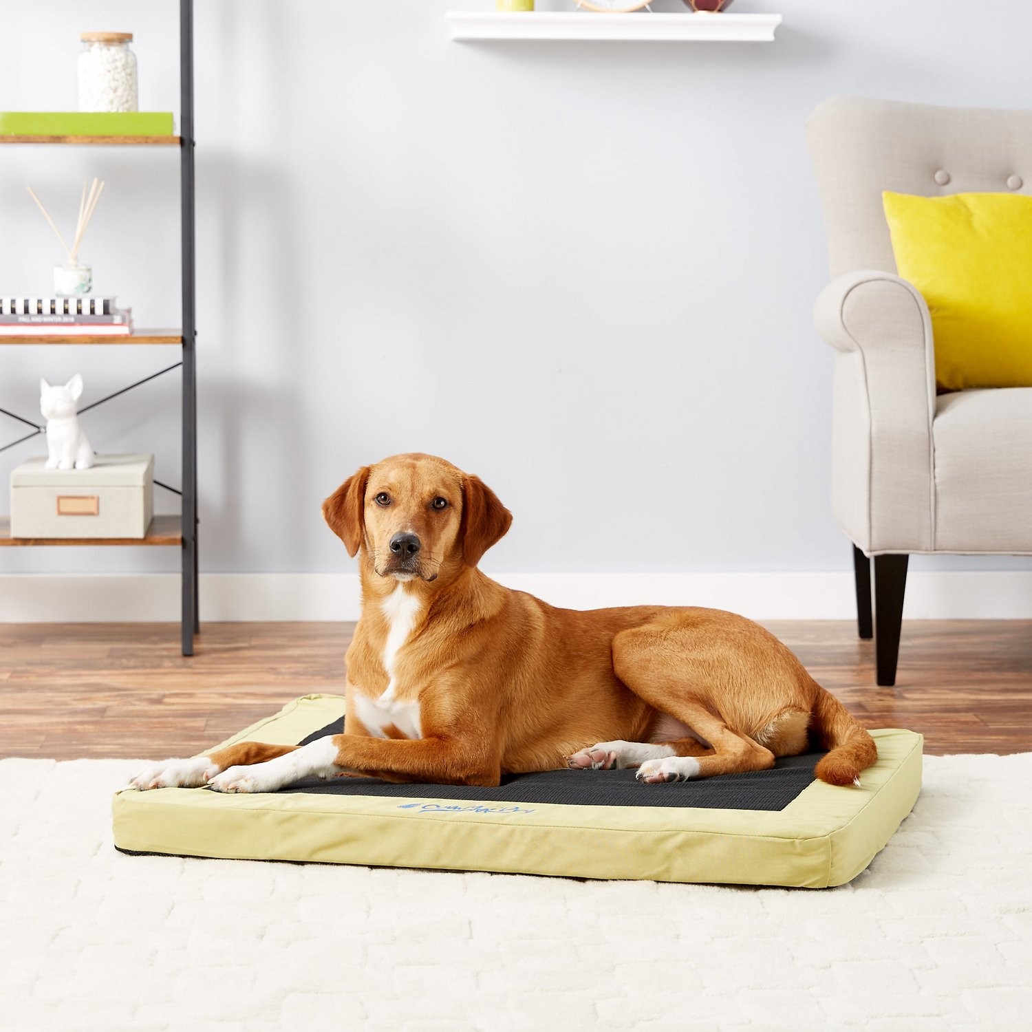 Comfy Mattress K H Pet Products Comfy N Dry Indoor Outdoor Dog Cat Bed Lime Green Medium