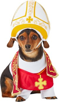 California Costumes Holy Hound Pope Dog Costume, XSmall ...