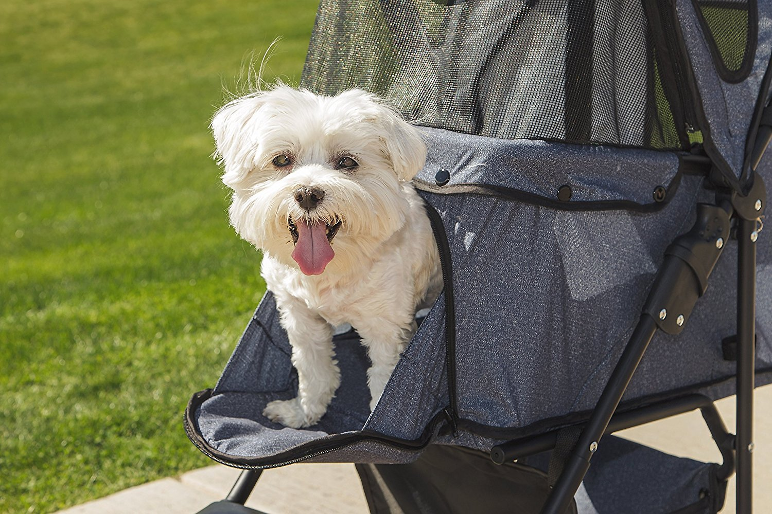 Pet Stroller Large Iris Dog Cat Folding Stroller 3 Wheel Denim Chewy