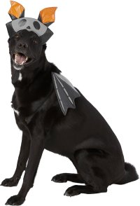 Frisco Reflective Bat Dog & Cat Costume, X