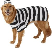 Frisco Prisoner Dog & Cat Costume, XX