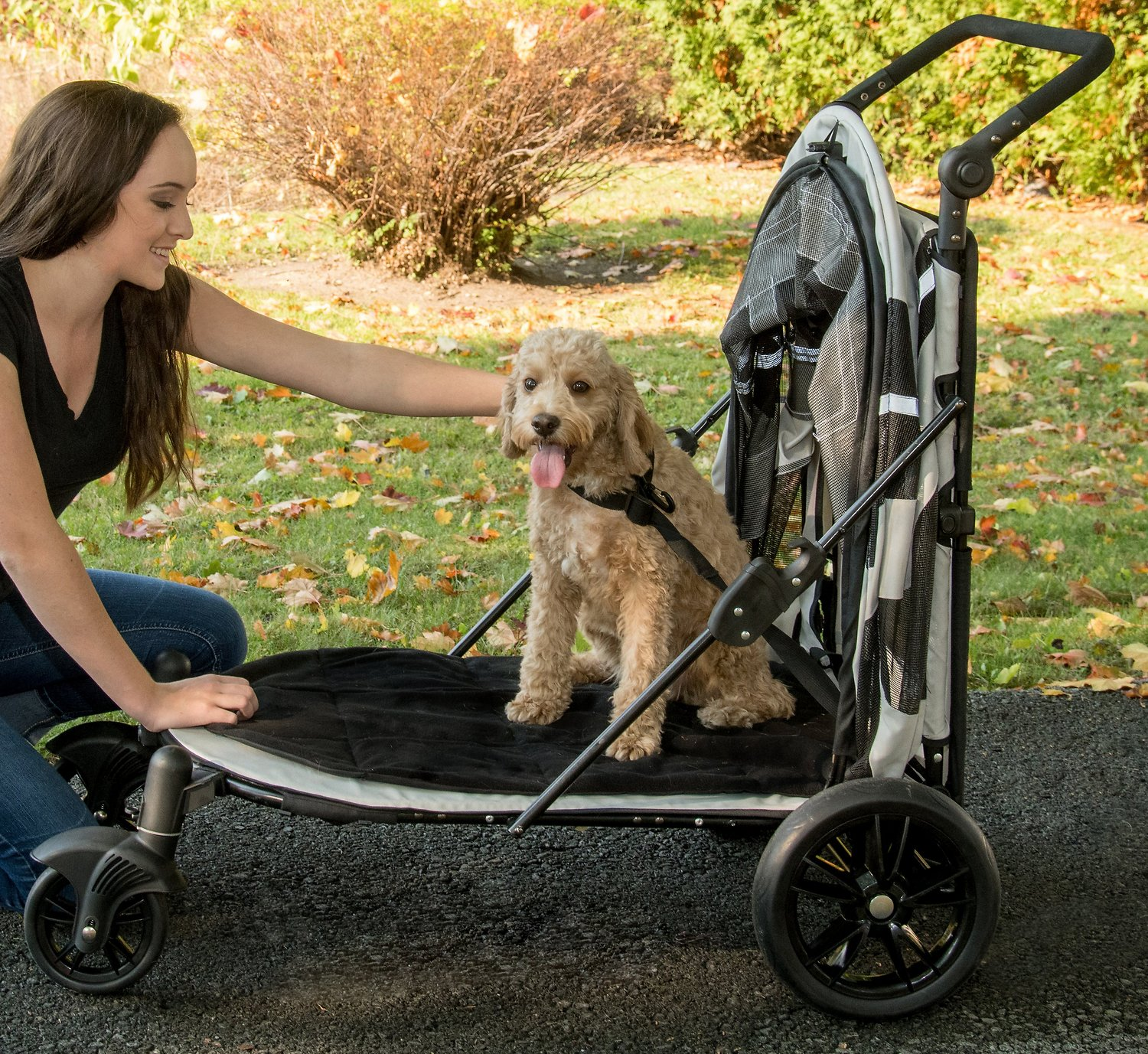 Dog Strollers Chewy.com Pet Gear Expedition No Zip Dog Cat Stroller Fog Chewy
