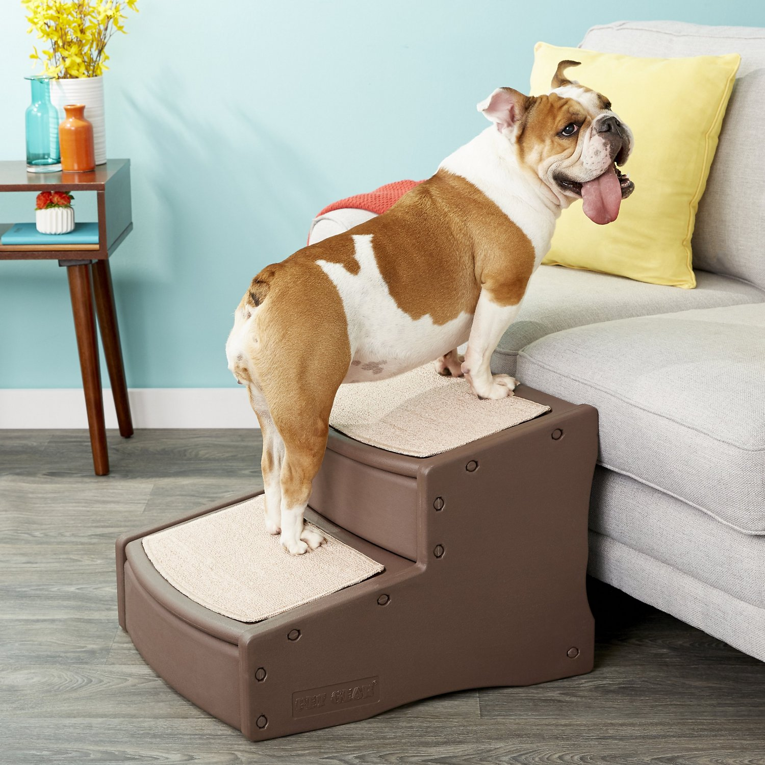 Pet Gear Easy Step Ii Extra Wide Chocolate Chewy Com - Extra Wide Couch