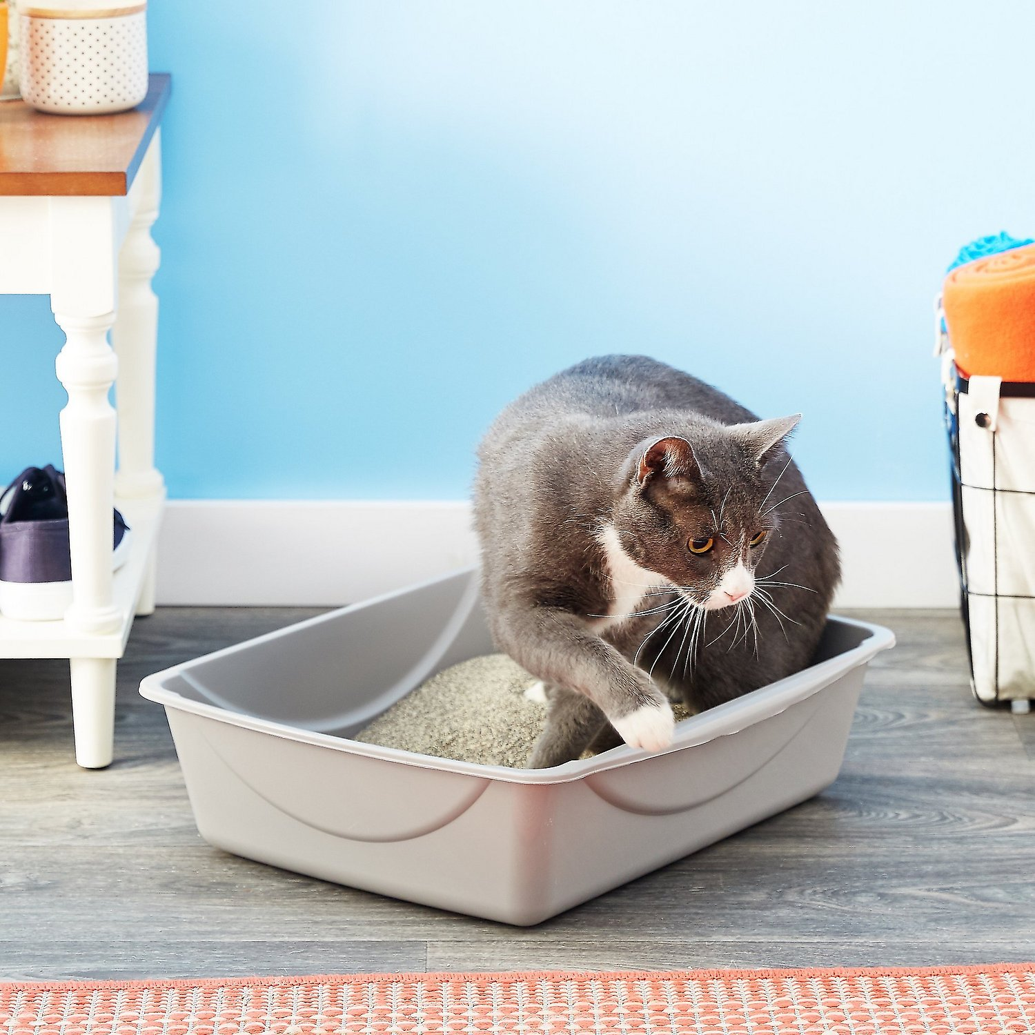 Petmate Litter Pan With Microban Color Varies Large