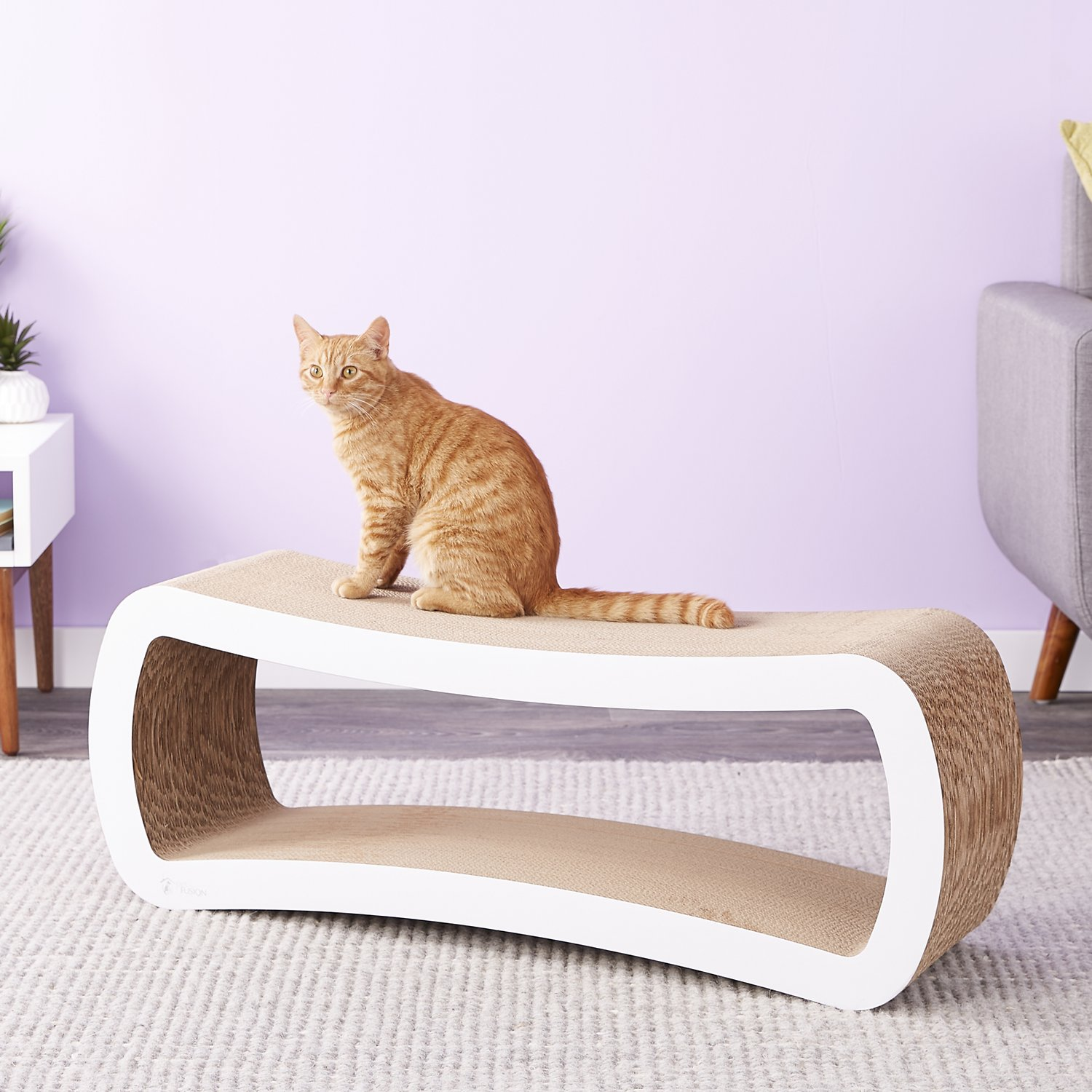 White Cat Scratching Post Petfusion Jumbo Cat Scratcher Lounge White Chewy