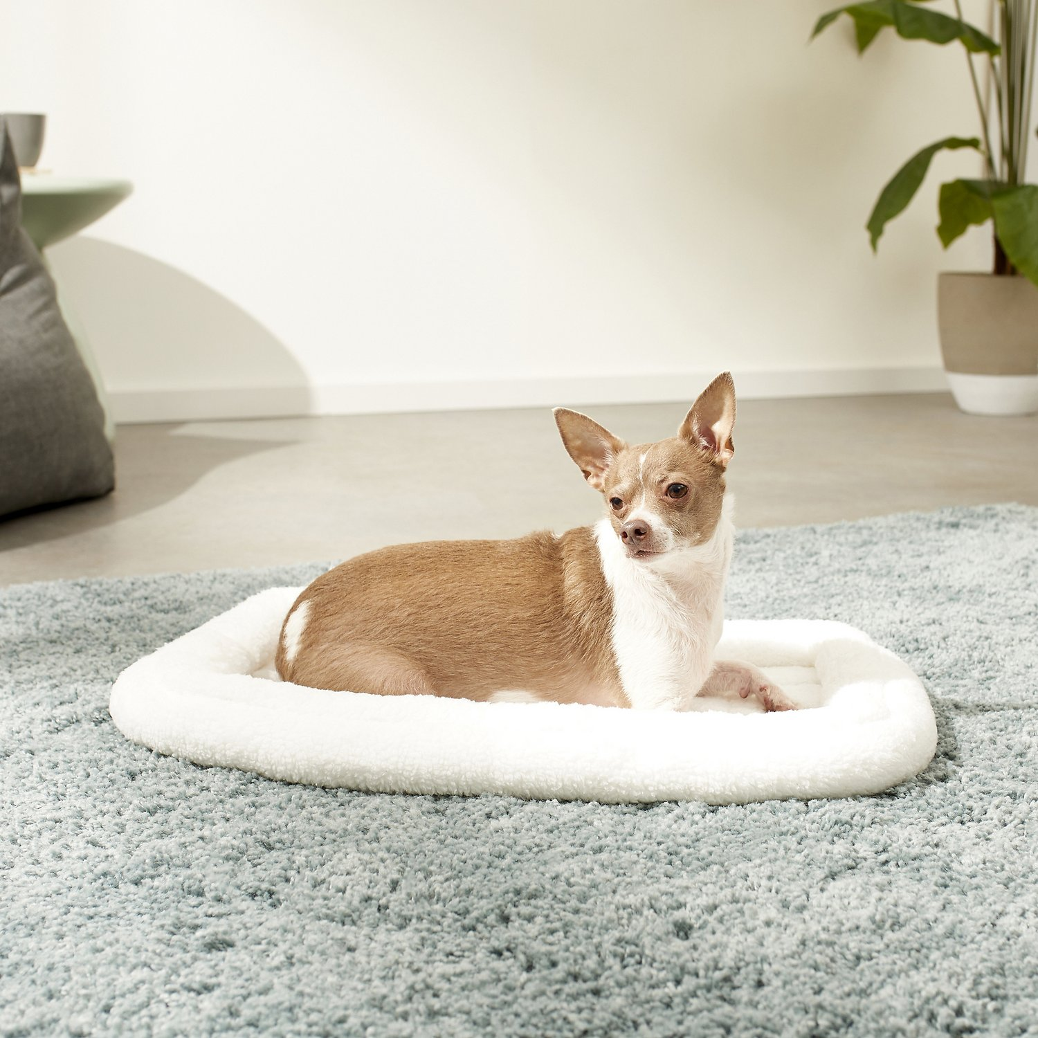 Double Dog Bed Midwest Quiet Time Deluxe Double Bolster Pet Bed Fleece 18 In