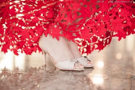 如果你是美鞋癡_Lucida Rossi