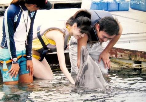 日本。沖繩島國之與海豚有約的夢幻蜜月飯店