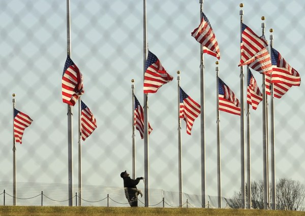 American flags at half-mast following the Sandy Hook school shootings in Connecticut.
