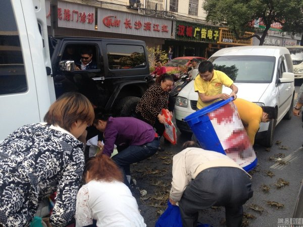 china-changsha-crabs-alligator-spilled-in-traffic-accident-looted-by-chinese-passerbys-02