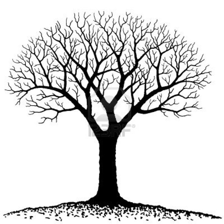 Clipart Family Tree  Look At Family TreeClip Art Images