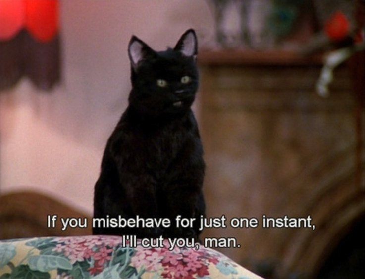 Crying Girl Wallpapers With Quotes 15 Reasons Salem From Quot Sabrina The Teenage Witch Quot Ruled