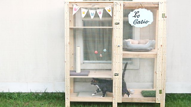 How To Turn An Ikea Shelf Into A Catio Cuteness