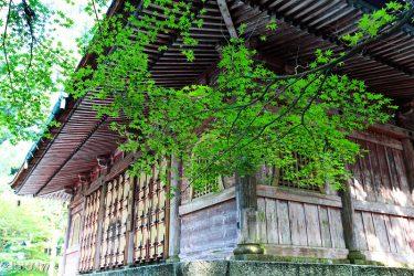 [夏.京都2-2]比叡山延曆寺:東塔