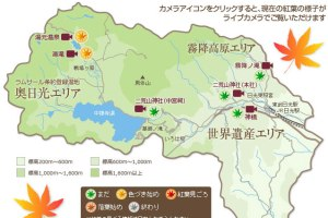 [日本關東楓紅之旅1-0]行前規劃