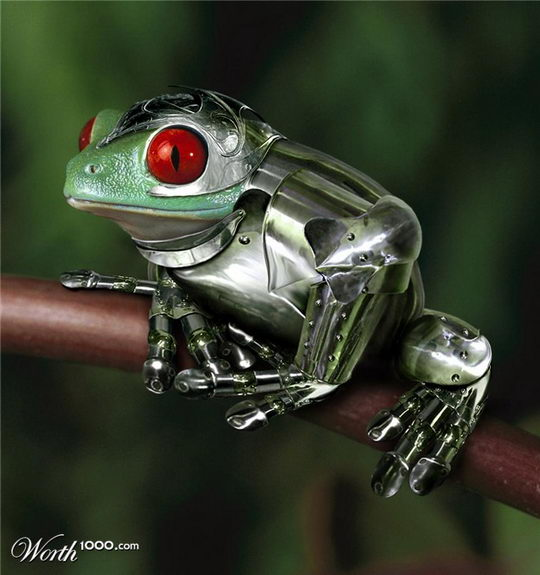 3d Frog Wallpaper Armored Animals Creative Photo Manipulation Contest From