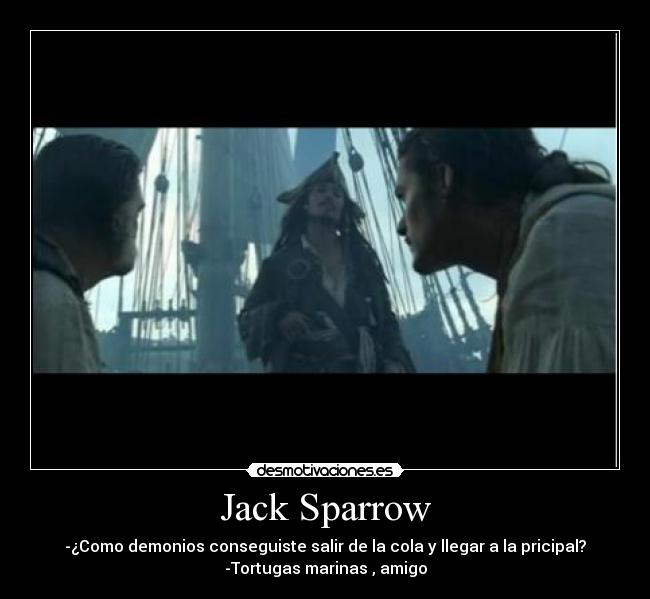 Captain Jack Sparrow Quotes Wallpaper Jack Sparrow Confusing Quotes Quotesgram