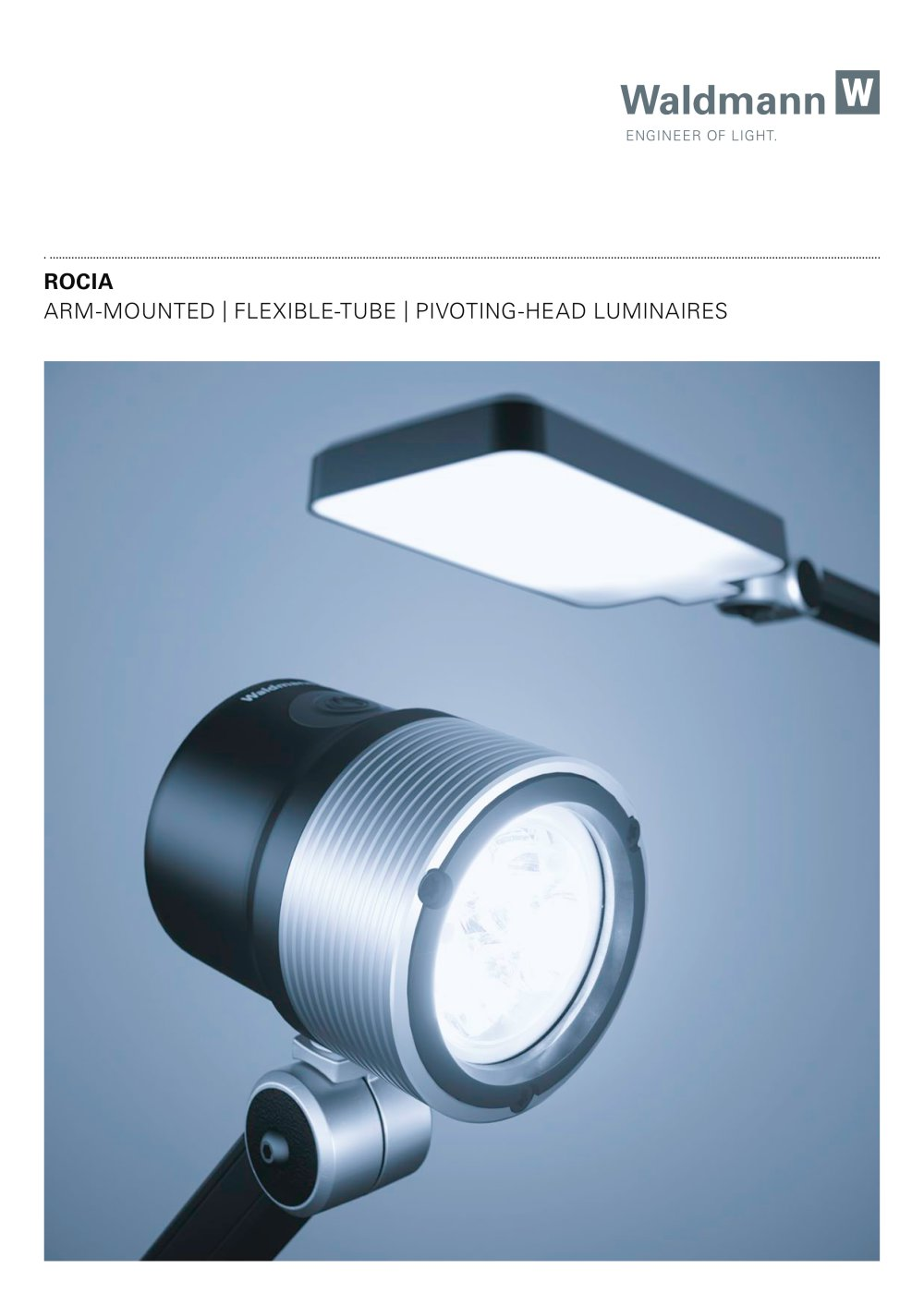 Flexible Rohre Arm Mounted Flexible Tube Pivoting Head Luminaires Rocia