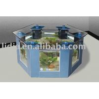 Hexagonal Coffee Table Aquarium of hebeilidia