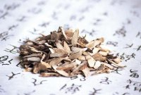 Dogs Health: Can I Use Pine Bedding for a Newborn Puppy?