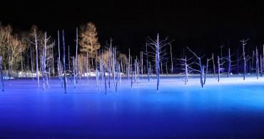 北海道、美瑛|白金青池 - 北海道必訪夢幻絕景,冬季限定夜間點燈活動