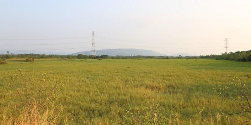 台南 台南歸仁區的後院x漫步田間享受自然風x追逐捲牧草的特殊景觀 台南市歸仁區|沙崙農場