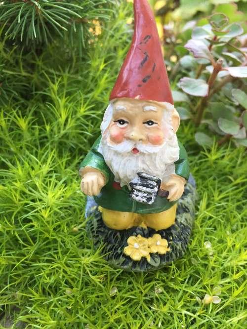 Medium Of Mini Gnome Gardens