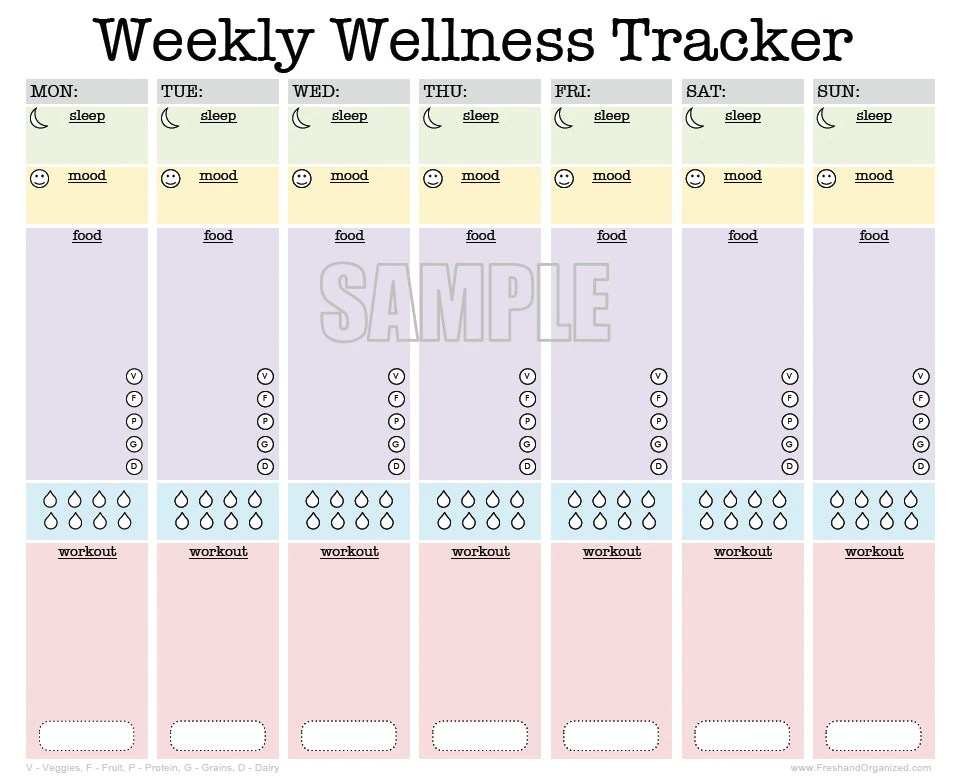 fitness and meal tracker - Acurlunamedia - diet and fitness tracker