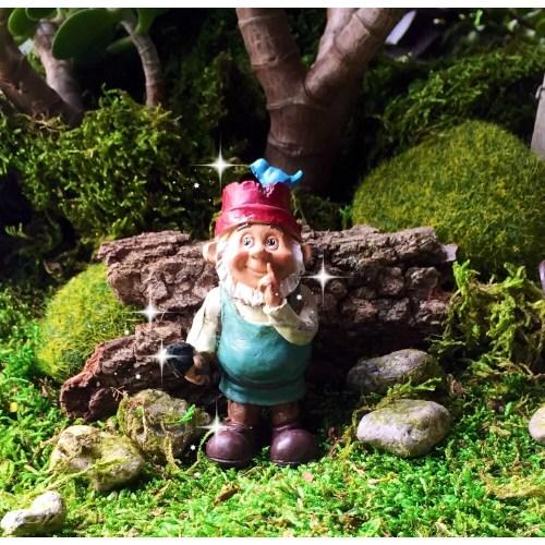 Medium Crop Of Miniature Garden Gnomes
