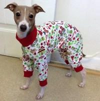 Pajamas for dogs. Italian Greyhound Pajamas. Pet Pajamas.