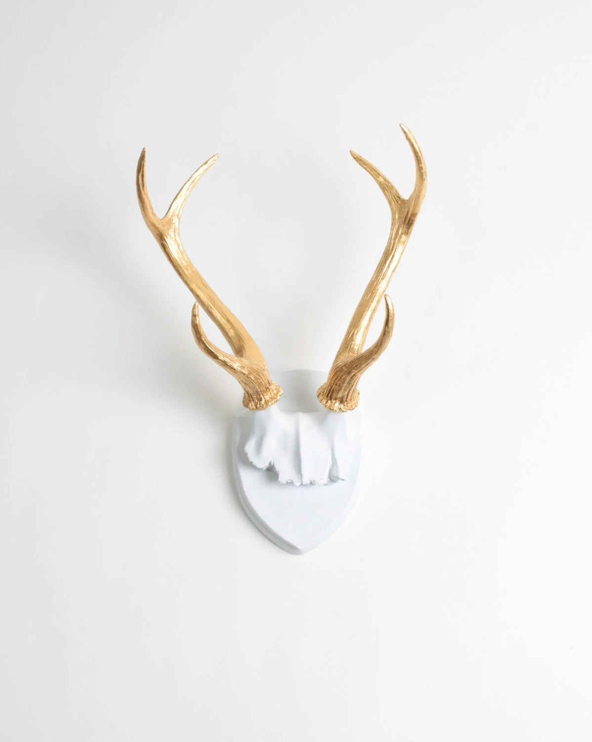 Fake Deer Skull And Antlers X Large Faux Deer Skull Antler Trophy W Plaque In White Gold