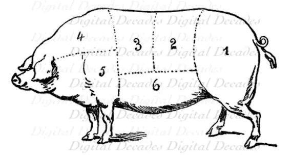 Butcher Diagram Art chic newest cafe latte kitchen wall art also 25