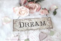 Roses Photography Shabby Chic Decor Romantic Dream Roses