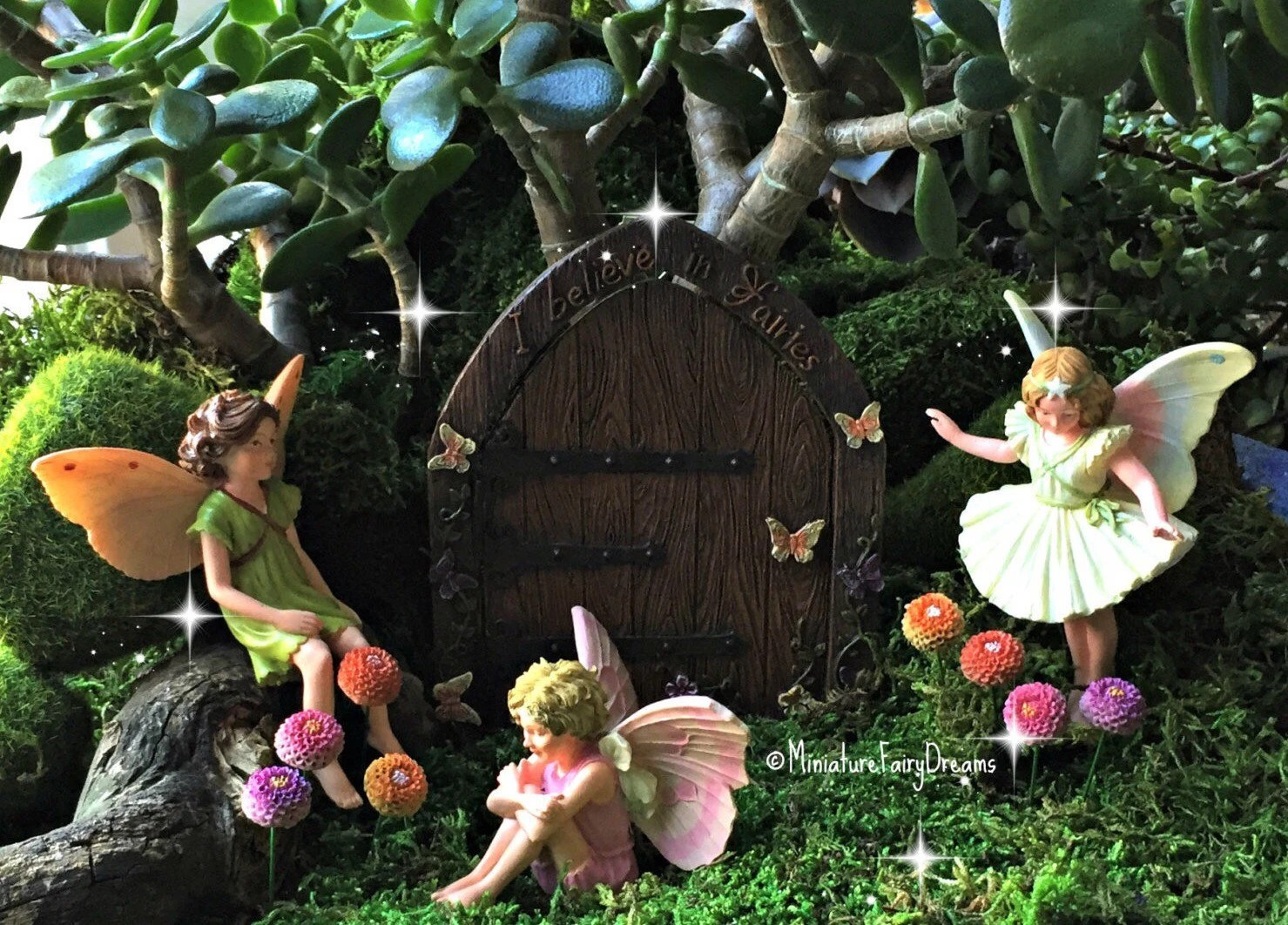 Fullsize Of Fairy Garden Flowers