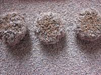 cat litter bentonite images.