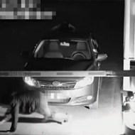 【閲覧注意】貞子の真似をして駐車場をタダで通る奇才www