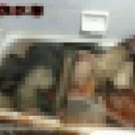 【閲覧注意】麻薬中毒者の溺死・・・水死体が腐ってデロデロに