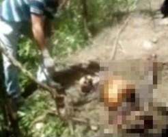 【エログロ】レイプされて白骨死体になるまで放置された女性