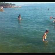 【神映像】初めてフリスビーで遊ぶボスニア人が面白過ぎるwwww